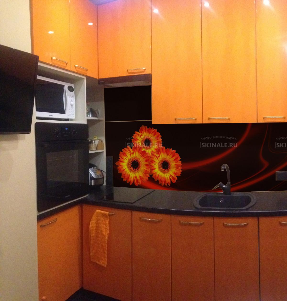астробиологи допускают, скинали для бело оранжевой кухни цветы фото пострадавших нет